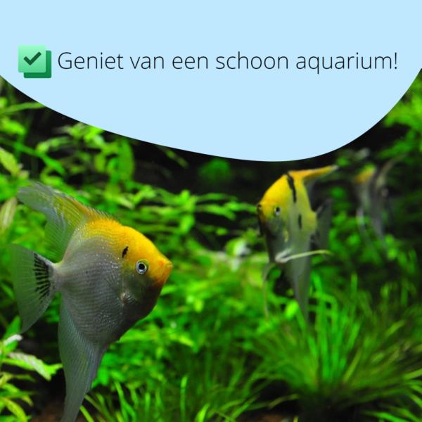Aquarium stofzuiger